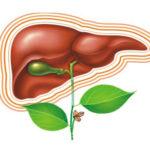 Гепатит. Виды и профилактика